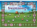 לרעאות את הכבשים לוח משחק