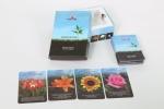 מסרים מהפרחים קלפים